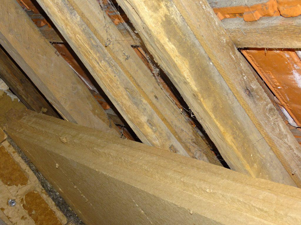 Untersparrendämmung Dachstuhl